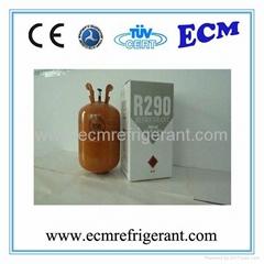 Environment-Friendly Propane Refrigerant Gas R290