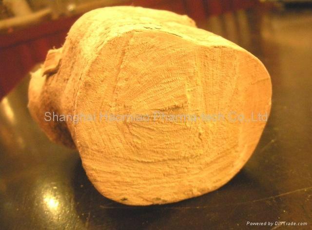 Eurycoma longifolia powder extract 2