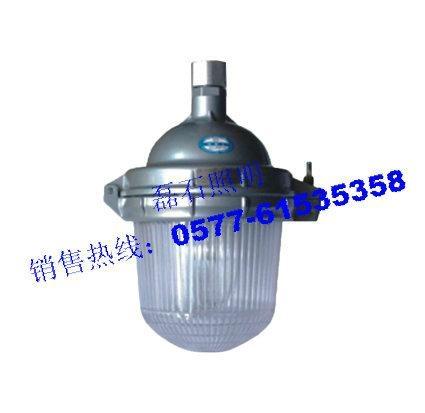 乐清磊石照明-防眩泛光灯NFC9112 1
