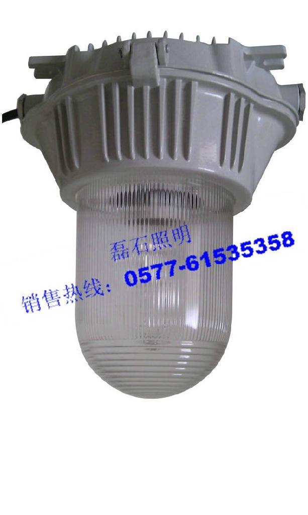 乐清磊石照明防眩泛光灯NFC9180 1