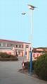 太陽能道路燈30W