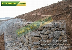 石籠網,石籠網價格,8*10石籠網,石籠網廠家