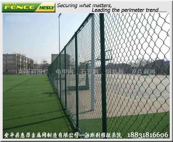体育场围栏,体育围网,勾花护栏,球场护栏 1