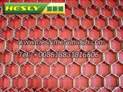龟甲网,龟甲网厂,龟甲网价格,耐高温龟甲网 5