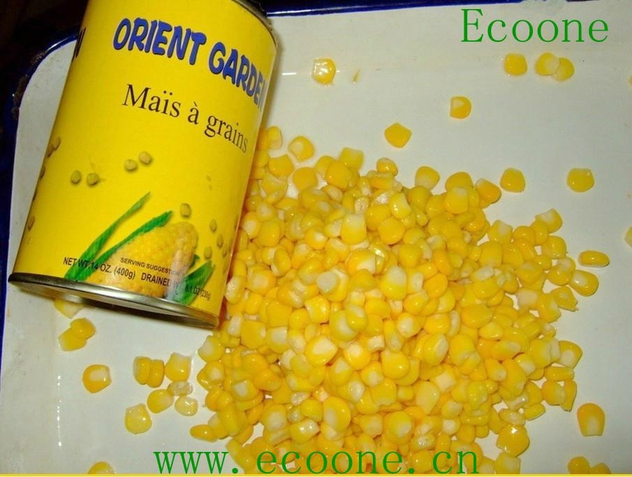 canned food-broad beans 4