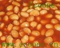 canend soybeans in tomato sauce