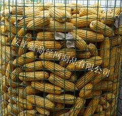 遼寧圈玉米綠色鐵絲網