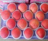 Delicious fuji apples