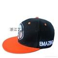毛球棒球帽 2