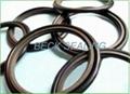 PTFE step seal/GSD/GSJ