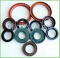 hydraulics piston  oil seals