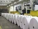 offset paper wood pulp