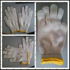 Safety Gloves,