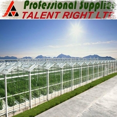 4mm tempered Agricuntural Greenhouse glass with CE from China