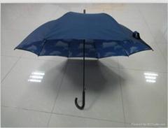 藍天白雲傘