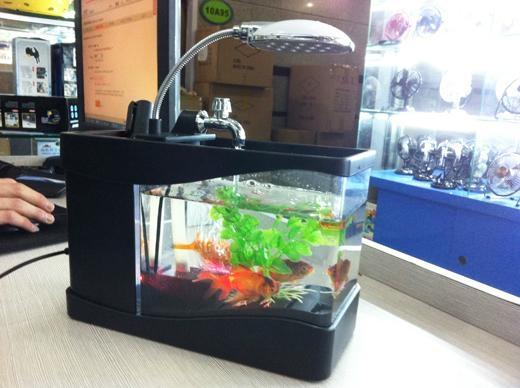 USB鱼缸 USB水族箱 迷你鱼缸 迷你水族箱 USB Fish tank 1
