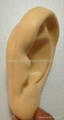 Ear Stress Shape For Medical Research 2