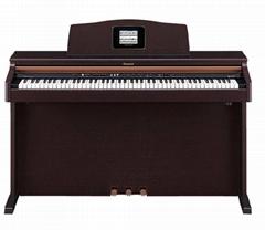 罗兰 MP-70电钢琴