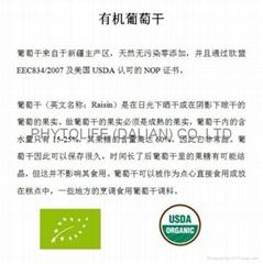 Organic raisin NOP/EEC