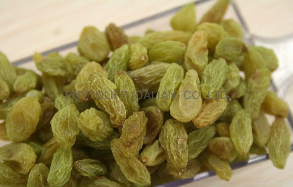 Organic raisin NOP/EEC 2
