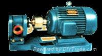 2CY-15齿轮泵