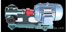 LB-20/2.5冷冻机专用齿轮泵