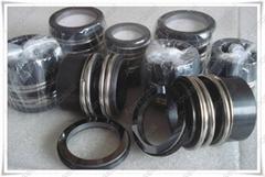 Elastomer bellow mechanical seal AS-EMG Series