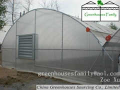 Commercial Agricultural Gutter Connected Greenhouses