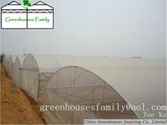 Plastic Gutter Greenhouses