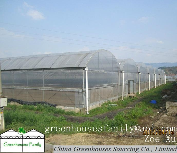 Plastic Gutter Greenhouses Gs832m Cgs China Trading