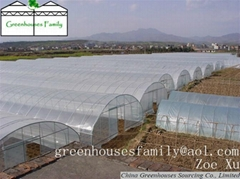 Galvanized Poly Tunnels Plastic Greenhouses