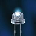插件LED 1