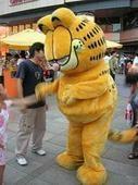 卡通服装人偶加菲猫
