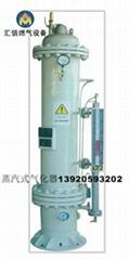 蒸汽式气化器