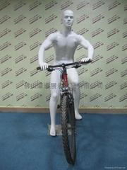 骑自行车姿势模特道具