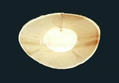 Eco friendly Areca leaf tableware