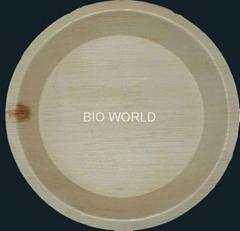 Chemical Free Areca Plates