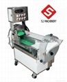 Popular ginger,potato,carrot,turnip,radish,taro,onion,apple cutting machine