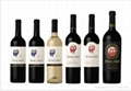 智利ATACAMA霞多麗干白葡萄酒 4