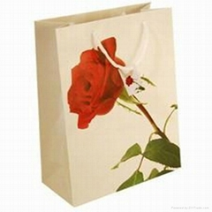 Beautiful Cheap Paper Bags