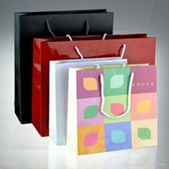 Popular Paper Carry Bag