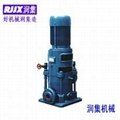 DL立式多級泵