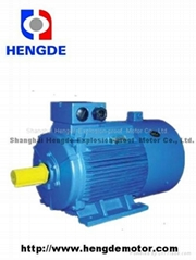 Three Phase Induction Motor For Frequency Converter/Variable Frequency Motor