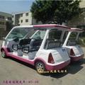 四轮电动游览车 3