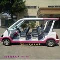 四轮电动游览车 4