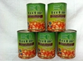Canned Food/Canned Beans/Canned White Kidney Beans