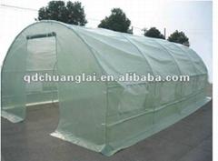 walk-in green house