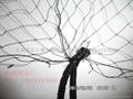 bird-nets 3