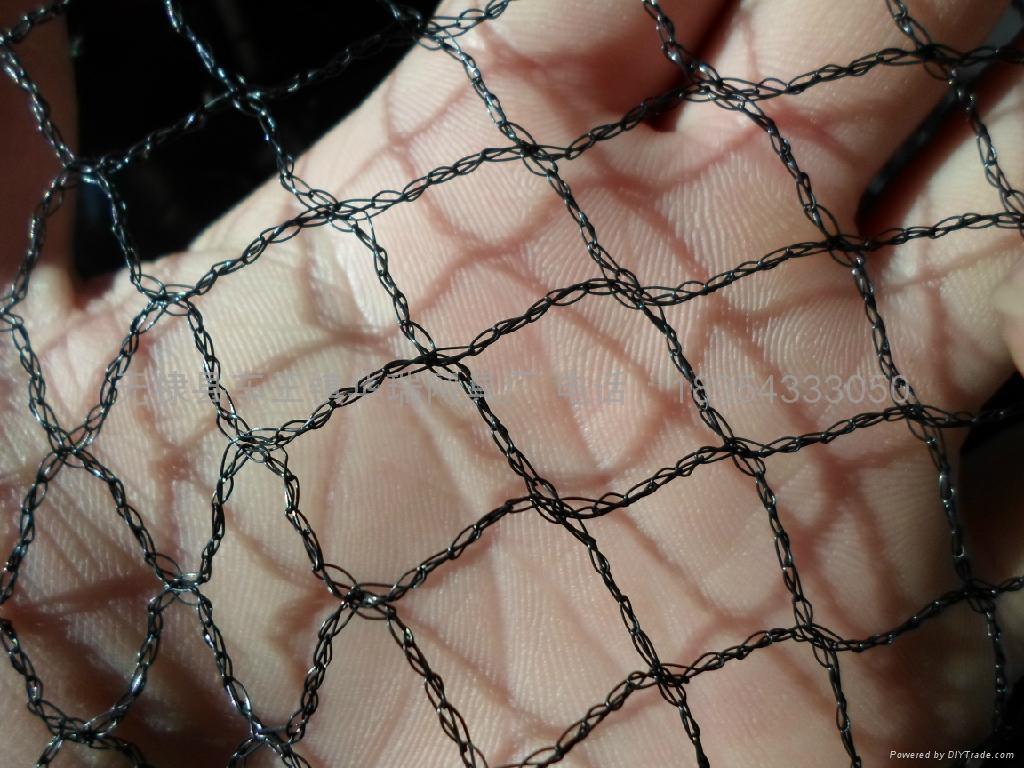 bird-nets 5