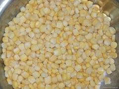 Frozen vegetable-Frozen Sweet Corn